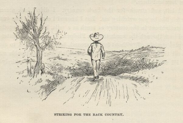 the concepts of cruelty and morality in the conscience of huckleberry finn by jonathan bennett and f Bloom's modern critical views african american gk chesterton john irving poets: wheatley– kate chopin henry james.