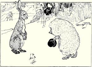 Geschichte Wettlauf Zwischen Hase Und Igel
