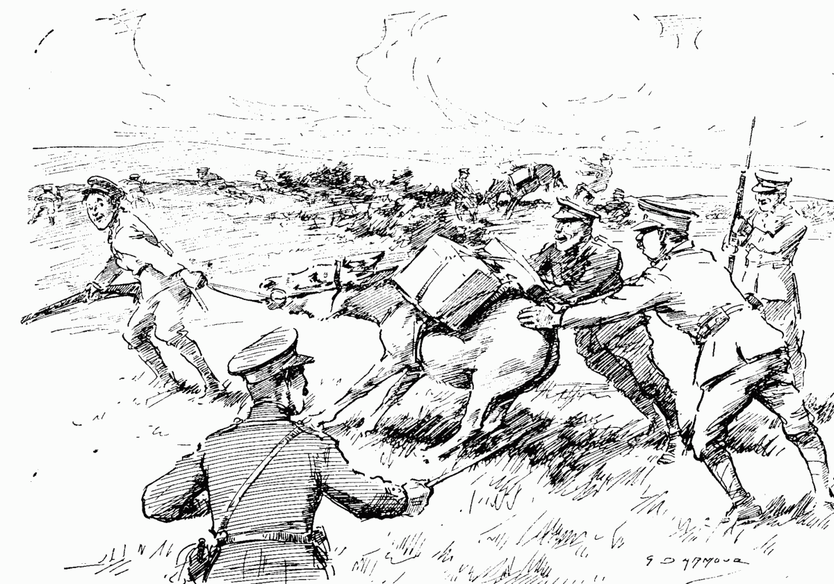 'lions led by donkeys' how accurate Learning in the first world war by dr robert t foley one of the most prevalent and enduring beliefs about the first world war is that those who led the war's armies were unable to adjust to the new conditions of fighting, particularly on the western front.