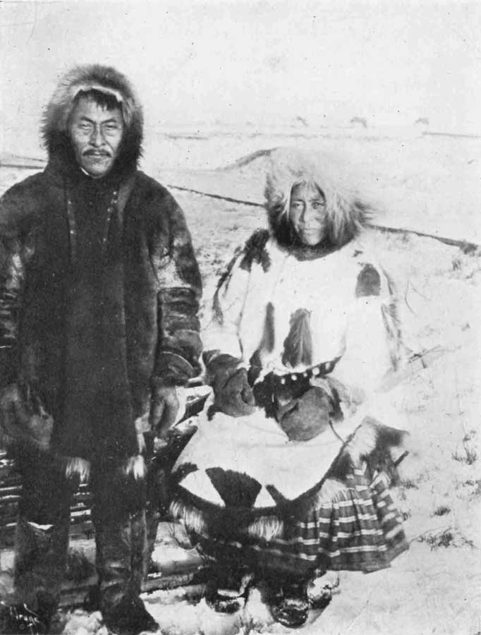 an overview of the eskimos 10 interesting facts about eskimos if you are going to participate in an arctic cruise you probably have an interest in the eskimo culture to help you learn more about these people that you are likely to encounter if you decide to take a greenland trip, we present 10 interesting eskimo facts that everyone should know.